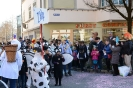 Fasnacht Montag 2017_12